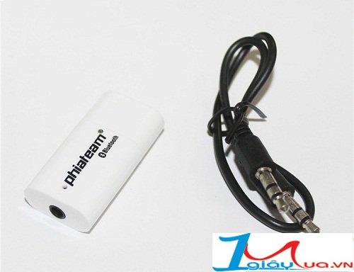 Kết nối âm thanh không dây với USB Bluetooth PT 810